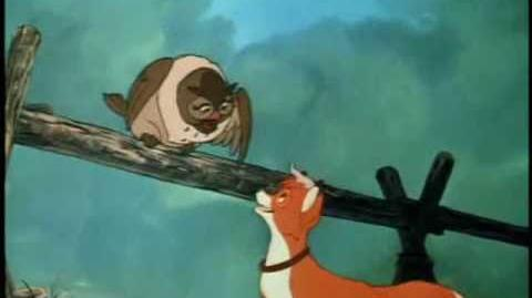 The Fox and the Hound - (Have Some) Fun With The Funk