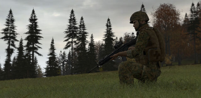 File:Arma 2 Rifleman.jpg