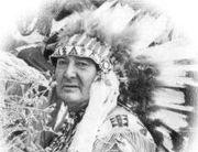Chief Many Treaties
