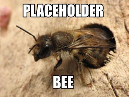 File:Placeholder Bee.jpg