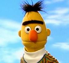 File:Bert.png