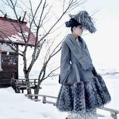 The Winter Country side of Mount Miyazaki