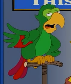 File:Talking parrot.png