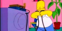 Homer vs. Lisa and the 8th Commandment/Gallery