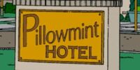 Pillowmint Hotel