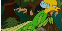 Mantis Burns