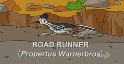 File:250px-Road Runner.png
