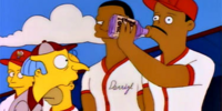 Homer at the Bat/Gallery