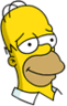 Homer Proud Icon