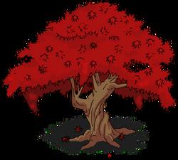 Japanese Maple Tree Menu