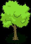 Tree03 transimage