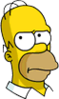 Homer Skeptical Icon