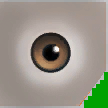 0x266F957704D3C5D4 hazel eyes copy