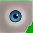 File:0x7882EE328F843230 ltblue eyes copy.png