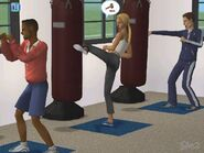 Sims2Fitness
