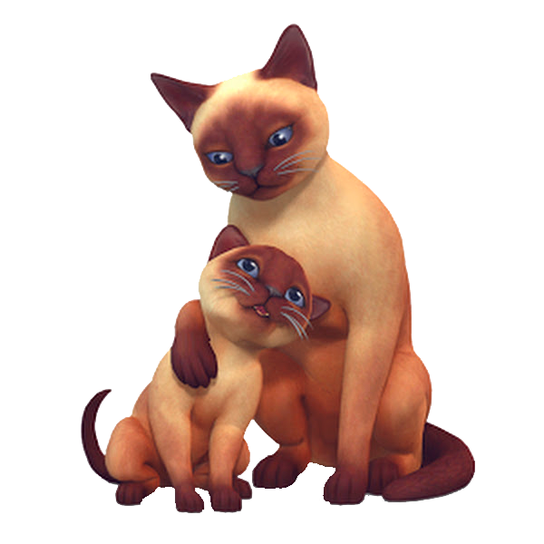 Ts Traits Cats And Dogs