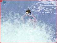 BVswimming