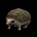 File:Pygmie Hedgehog.png