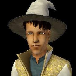 Sebastian Wizard Adult