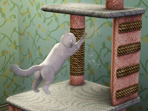 File:Cat scratching.jpg