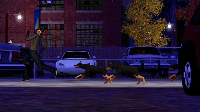 File:Dogs chasing a burglar.jpg
