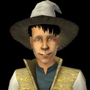 Lee Wizard Adult