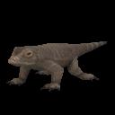 File:Pygmy Komodo Dragon.png