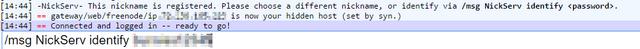 File:Freenode IRC webchat msg NickServ identify.png