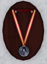 File:Hero medal.jpg