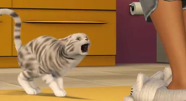 File:The sims 3 Cat 1.JPG