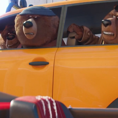 The bears arrive at the <a href=