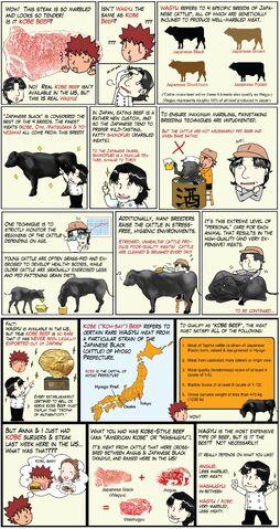File:ChefTaro - Wagyu and Kobe Beef (posted on 4.14.11).jpg