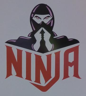File:Ninja logo.jpg