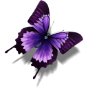 File:(butterfly).png