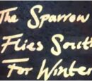 The sparrow flies south for the winter