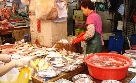 File:Hong Kong Fish Market 01.jpg