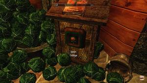 Ct cabbage dispenser