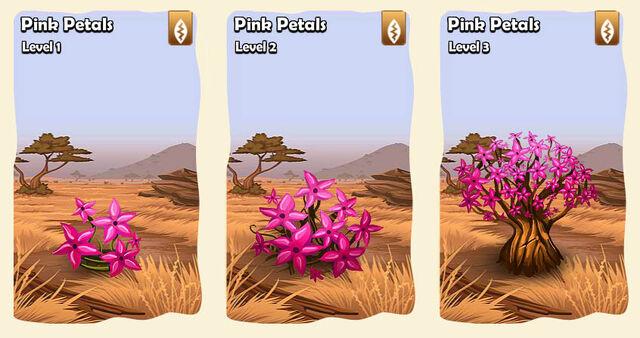 File:03 flower savana pink petals.jpg