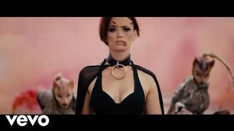 Jessica Sutta - Feline Resurrection
