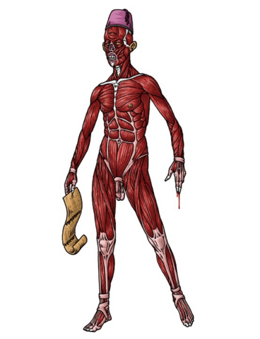 File:Skinless one.png