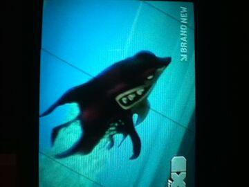 File:Sharkslug.jpg