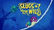 Slugs In The Wild