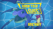 Know Your Slugs 'Arachnet'