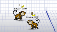 Multiplayer Monkeys