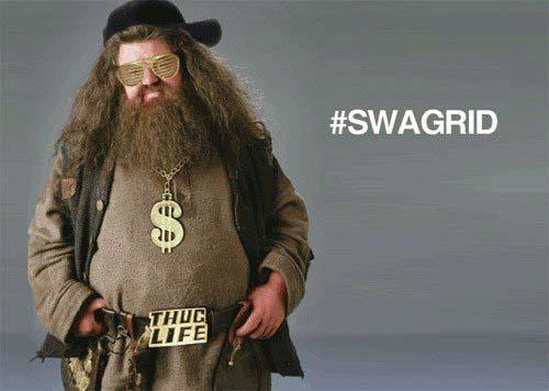 File:Potter-puns-swagrid.jpg