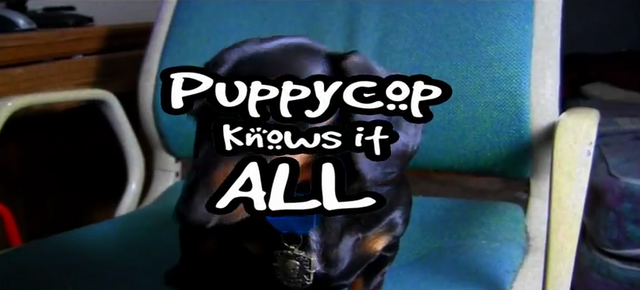 File:Puppycopknowsitall.png