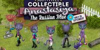 Anastasiya The Russian Blue