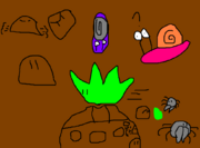 Snailiad8