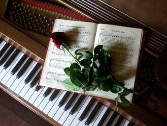 Pianoabcdefg123