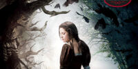 Snow White and the Huntsman: A Novel